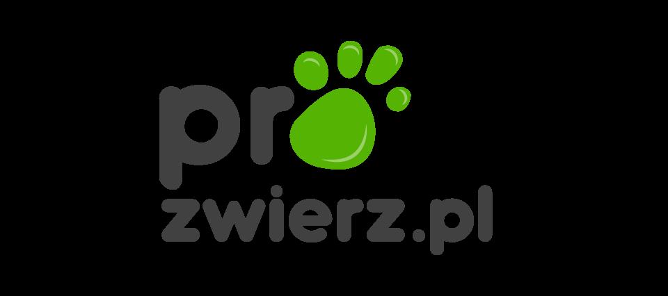 Blog o psach i kotach | ProZwierz.pl